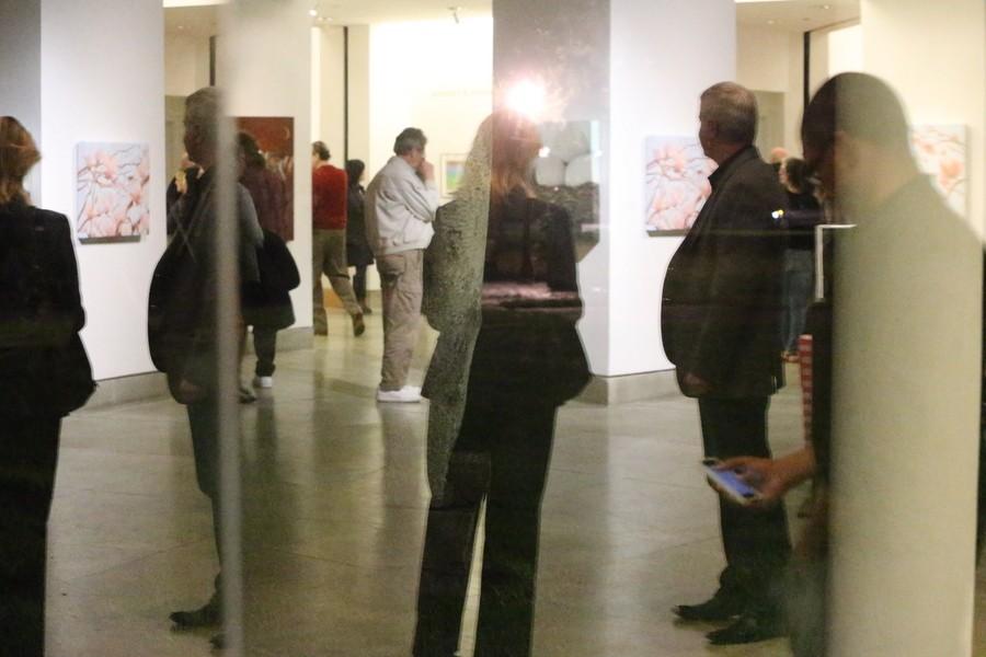 Holly Van Hart, Triton Museum Of Art, Solo Exhibition