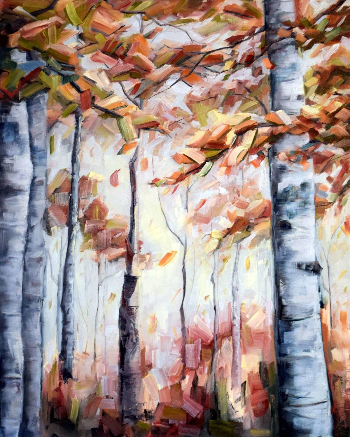 Birch Trees in the Fall – 'Autumn Reds'