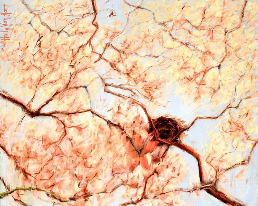 nest painting in flowering trees by american artist Holly Van Hart