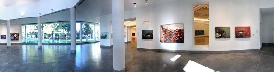Triton Museum of Art, Holly Van Hart solo exhibition, nature paintings, nests, ribbons