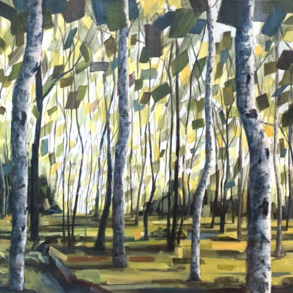 Sunlit Forest With Birch Trees. Abstract Green And Blue Leaves. Forest Floor Is Green And Yellow. Mixed Media Painting By Holly Van Hart.