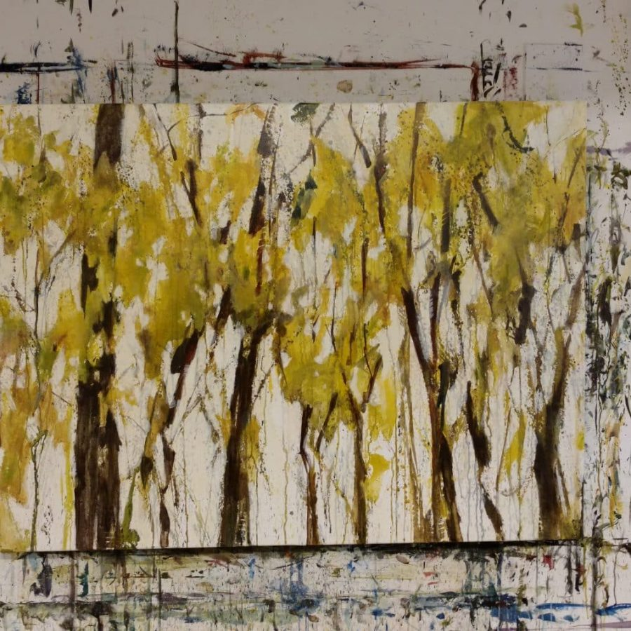 Forest and Tree Paintings by American artist Holly Van Hart